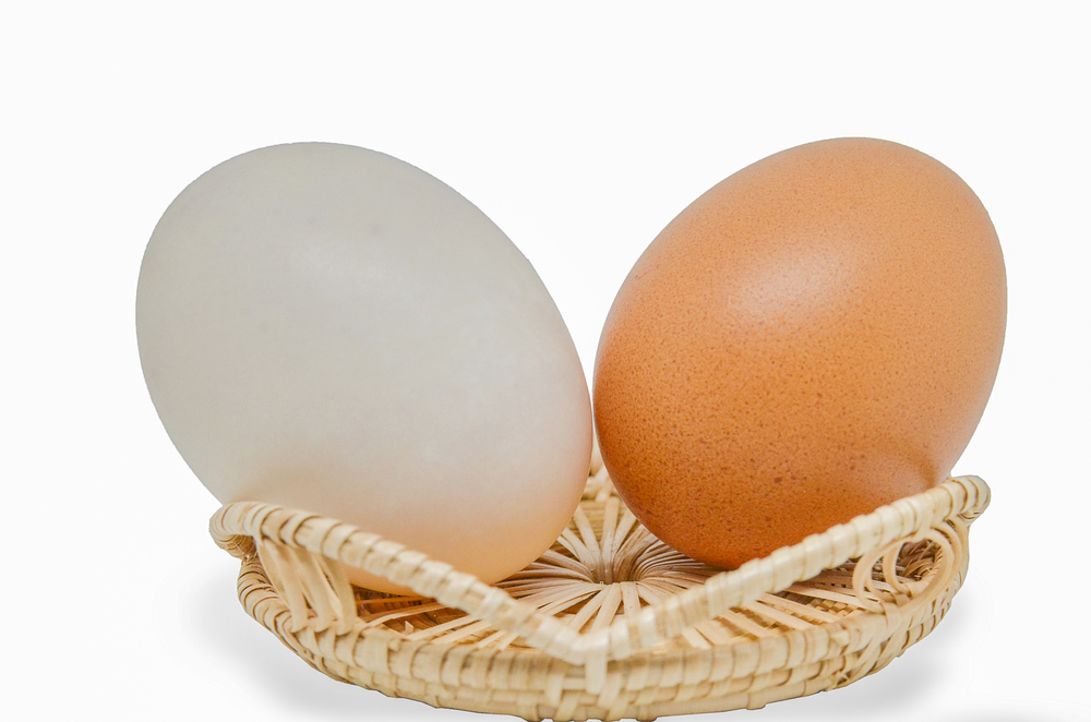 Brown Eggs v/s White Eggs - What's the difference? | Fit ...